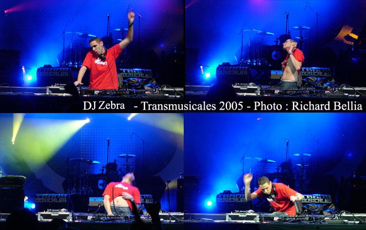 Dj Zebra Trans2005_RBellia